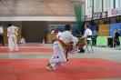 Alwin-Rauch-Pokal - Fürth - 31.05 bis 01.06.2014_19